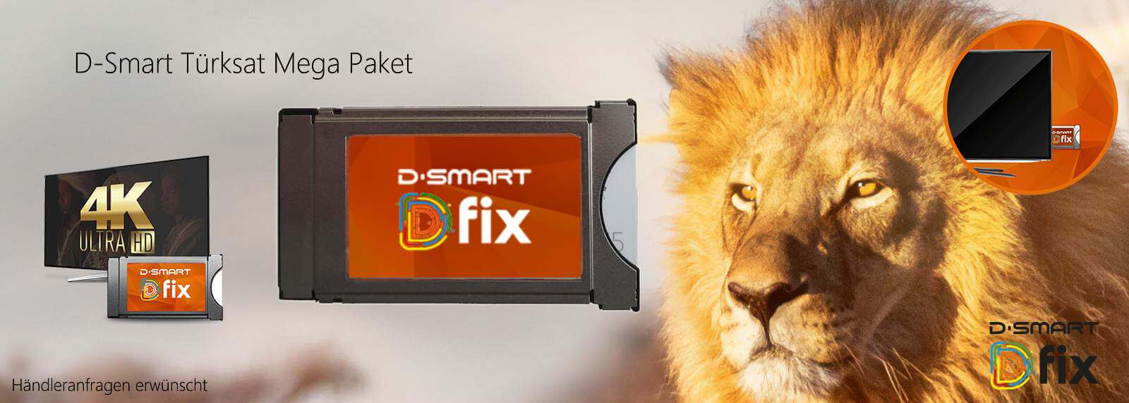 D-Smart D-Fix Türksat Mega Paket